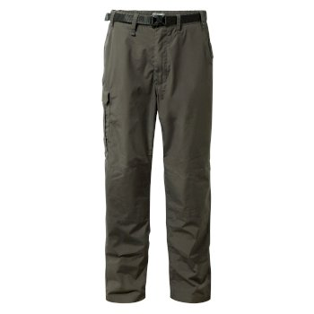 Men's Classic Kiwi Pants - Bark