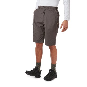 Kiwi Long Shorts - Bark