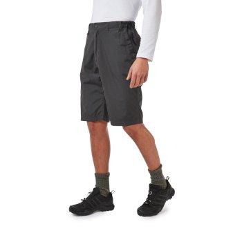 Kiwi Long Shorts Black Pepper