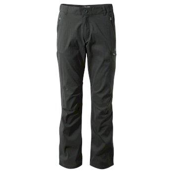 Kiwi Pro Pants - Dark Lead
