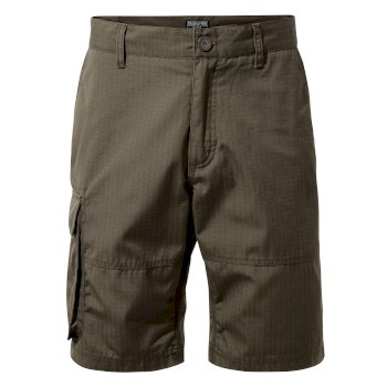 Men's Kiwi Ripstop Short - Woodland Green