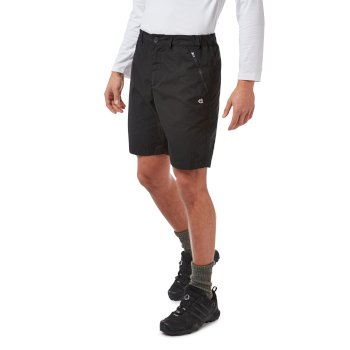 Kiwi Short - Black