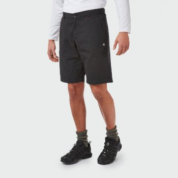 Verve Short - Black