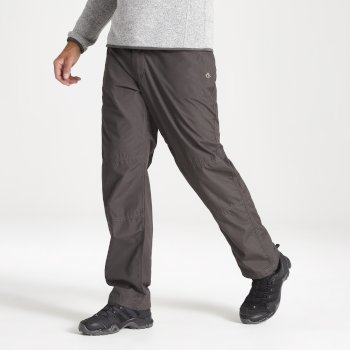 Kiwi Classic Trousers - Bark