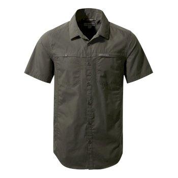 Kiwi Trek Short-Sleeve Shirt - Ashen