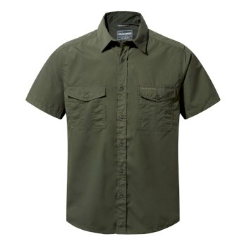 Men's Kiwi Short Sleeved Shirt - Cedar