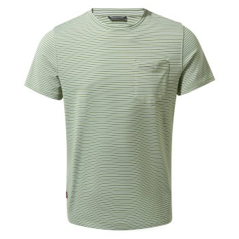 NosiLife Ina Short Sleeved T-Shirt - Agave Green Stripe