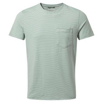 NosiLife Ina Short Sleeved T-Shirt - Sage Stripe