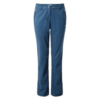 Kiwi Pro Stretch Pants  - Loch Blue