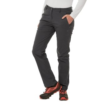 Kiwi Pro II Winter Lined Trousers - Graphite