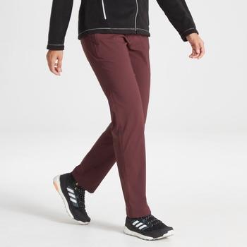 Kiwi Pro II Trousers - Deep Garnet