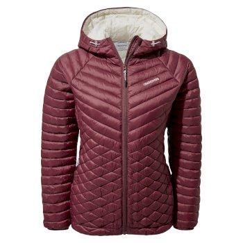 Expolite Hooded Jacket - Wildberry