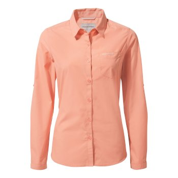 Women's Kiwi Long-Sleeved Shirt - Rosette