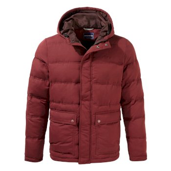 Campellio Downlike Hooded Jacket - Loganberry