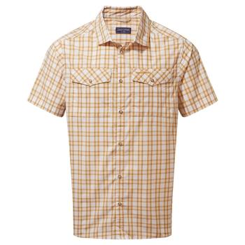 Murray Short Sleeved Shirt - Dark Butterscotch Check