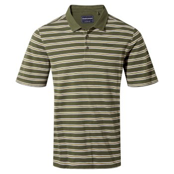 Stanton Short Sleeved Polo - Parka Green Stripe